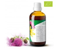 Bitterkraft!® Original Bio 100 ml