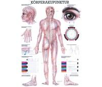 Charts Körperakupunktur – Die Mini-Chart